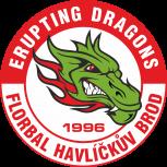 TJ Sokol H.Brod Erupting Dragons